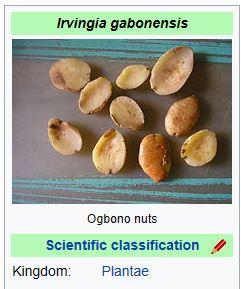 OGBONO4